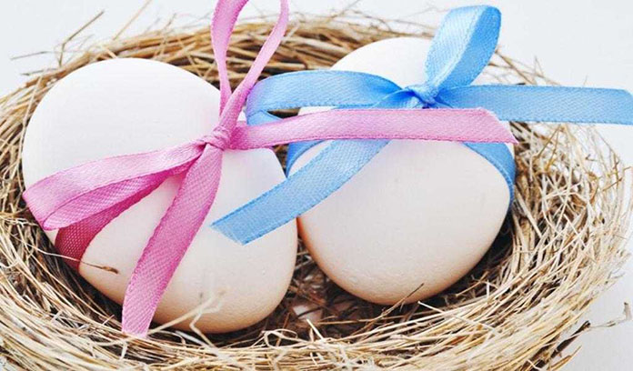 yumurta donasyonu Kıbrıs